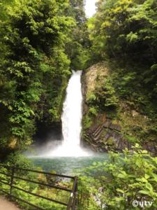 伊豆・浄蓮の滝。たまにはこーゆー写真も。