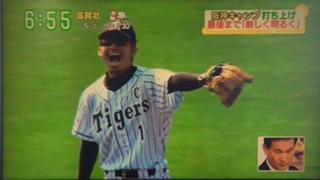 tigers1612.jpg