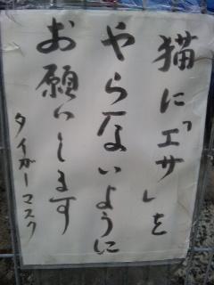 121008_172514.JPG